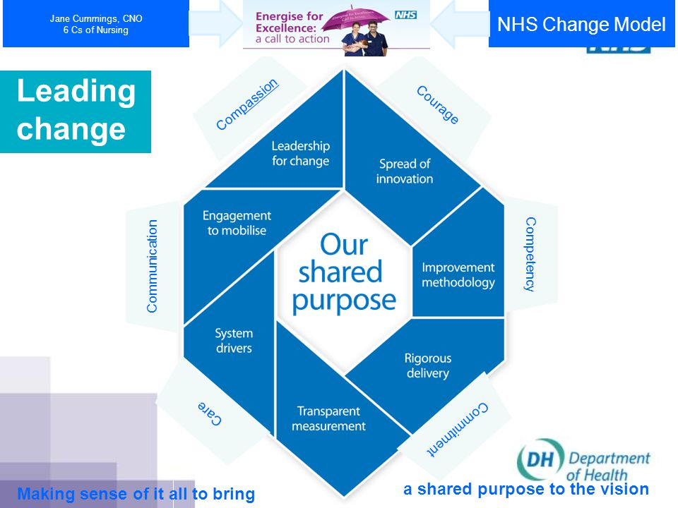 National policy and nursing developments Vision and values Purpose and functions Organisational design Driving through change Improving and measuring health outcomes Maximising the contribution of nurses
