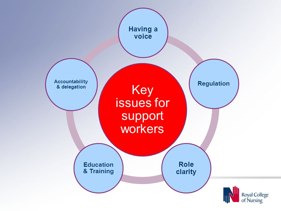 Key issues for support workers Having a voice Regulation Role clarity Education & Training Accountability & delegation