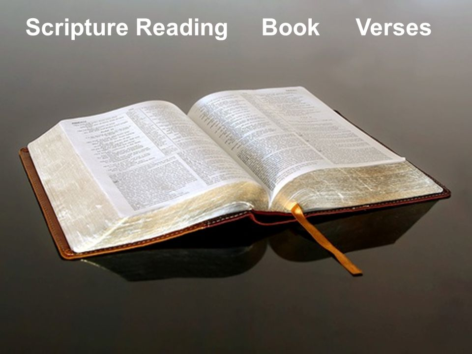 Scripture ReadingBookVerses