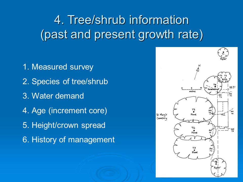 4. Tree/shrub information (past and present growth rate) 1.Measured survey 2.Species of tree/shrub 3.Water demand 4.Age (increment core) 5.Height/crow