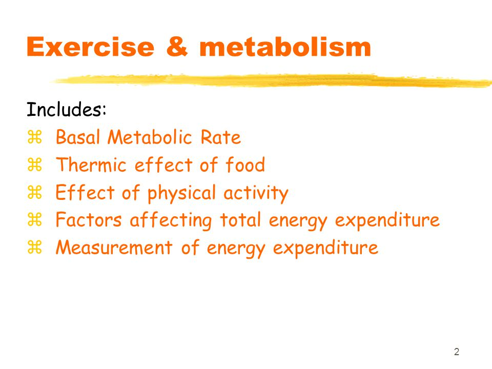 2 Exercise & metabolism Includes: zBasal Metabolic Rate zThermic effect of food zEffect of physical activity zFactors affecting total energy expenditure zMeasurement of energy expenditure