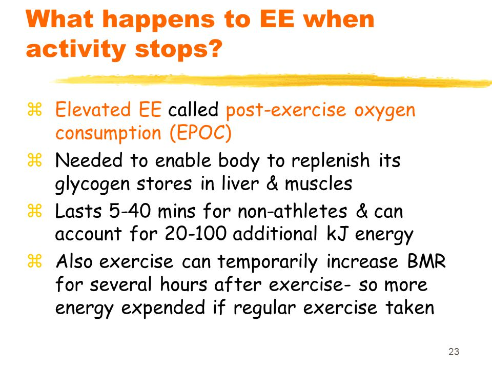 23 What happens to EE when activity stops.