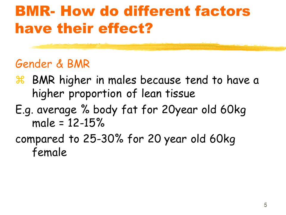 6 BMR- How do different factors have their effect.