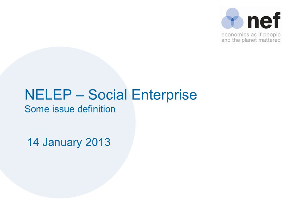 NELEP – Social Enterprise Some issue definition 14 January 2013