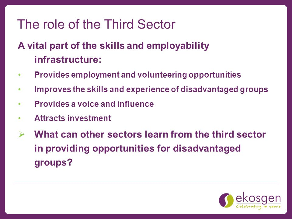 The role of the Third Sector A vital part of the skills and employability infrastructure: Provides employment and volunteering opportunities Improves the skills and experience of disadvantaged groups Provides a voice and influence Attracts investment  What can other sectors learn from the third sector in providing opportunities for disadvantaged groups