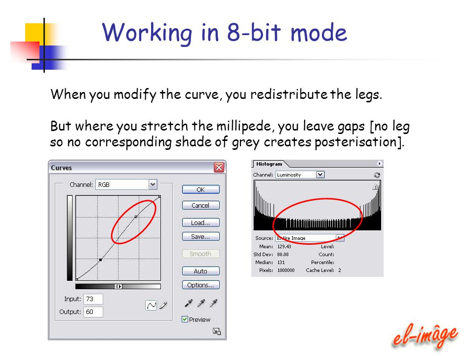 Working in 8-bit mode When you modify the curve, you redistribute the legs. But where you stretch the millipede, you leave gaps [no leg so no correspo