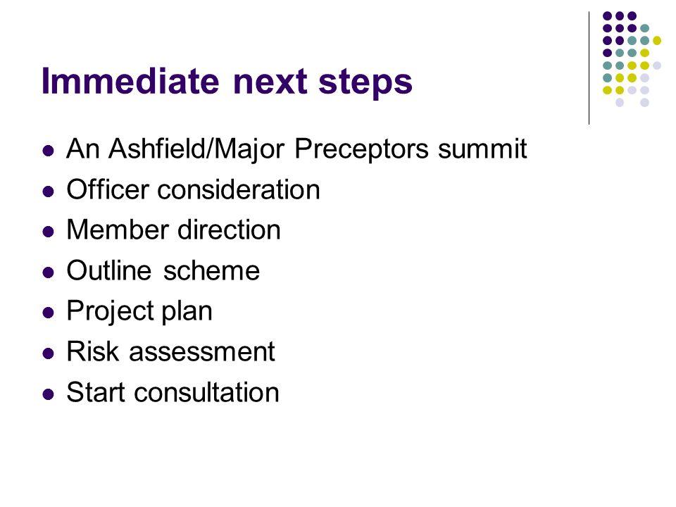 Immediate next steps An Ashfield/Major Preceptors summit Officer consideration Member direction Outline scheme Project plan Risk assessment Start consultation