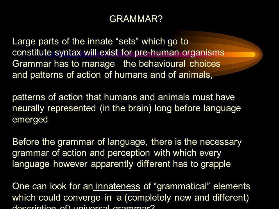 """GRAMMAR? Large parts of the innate """"sets"""" which go to constitute syntax will exist for pre-human organisms Grammar has to manage the behavioural choic"""