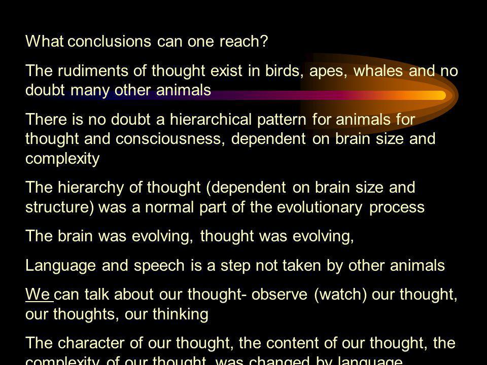 What conclusions can one reach? The rudiments of thought exist in birds, apes, whales and no doubt many other animals There is no doubt a hierarchical