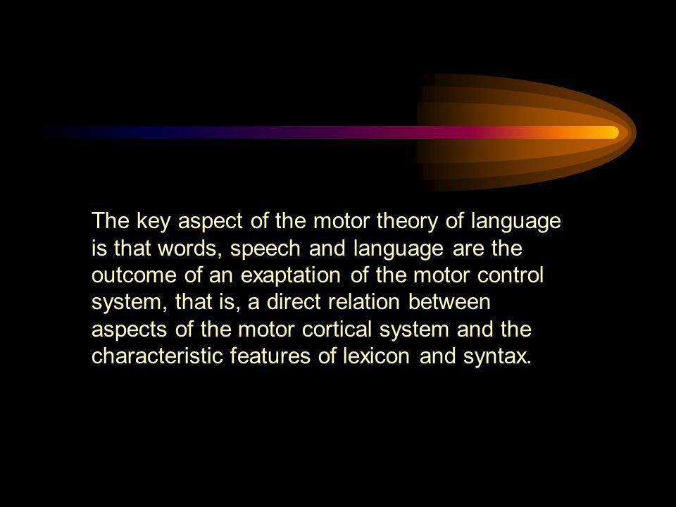 The key aspect of the motor theory of language is that words, speech and language are the outcome of an exaptation of the motor control system, that i