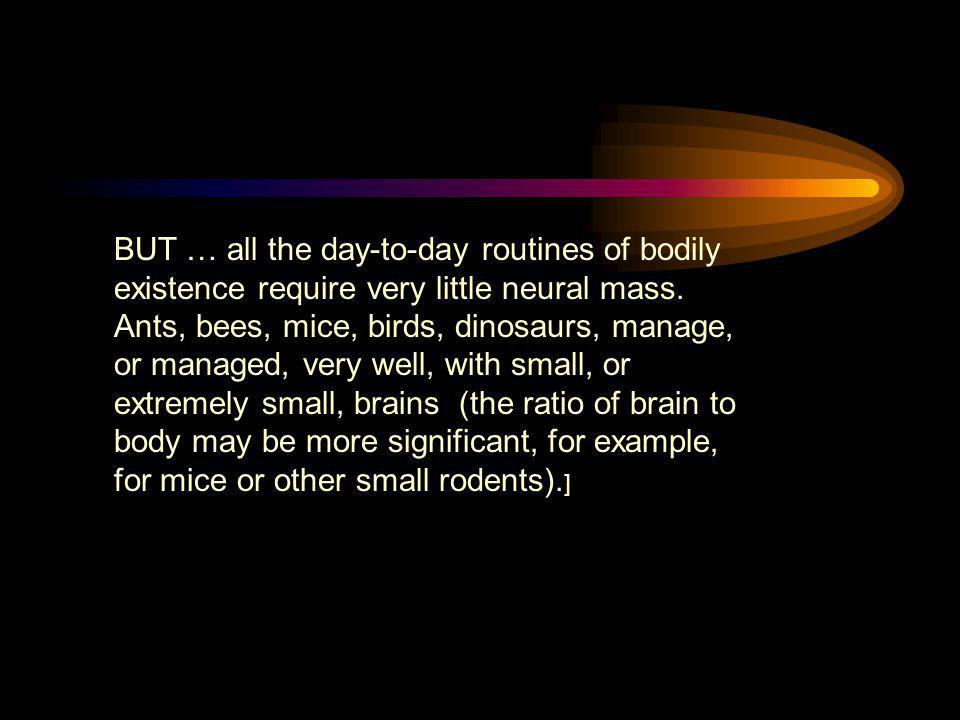 BUT … all the day-to-day routines of bodily existence require very little neural mass. Ants, bees, mice, birds, dinosaurs, manage, or managed, very we