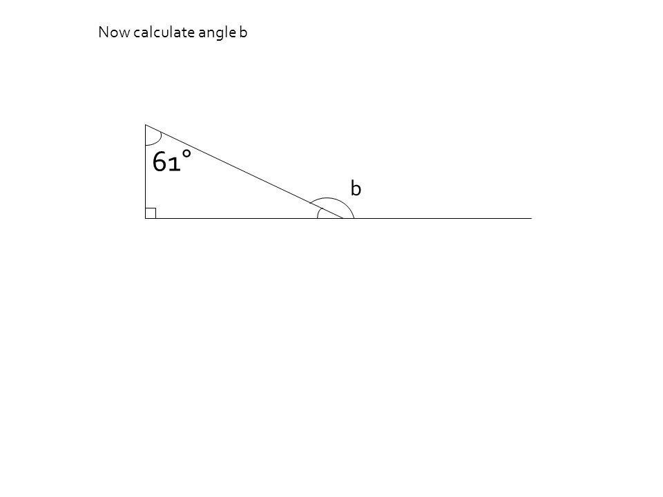 Now calculate angle b 61° b