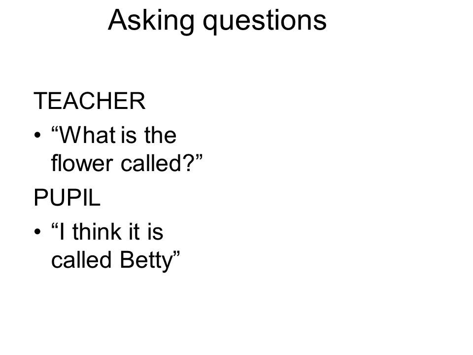 "Asking questions TEACHER ""What is the flower called?"" PUPIL ""I think it is called Betty"""