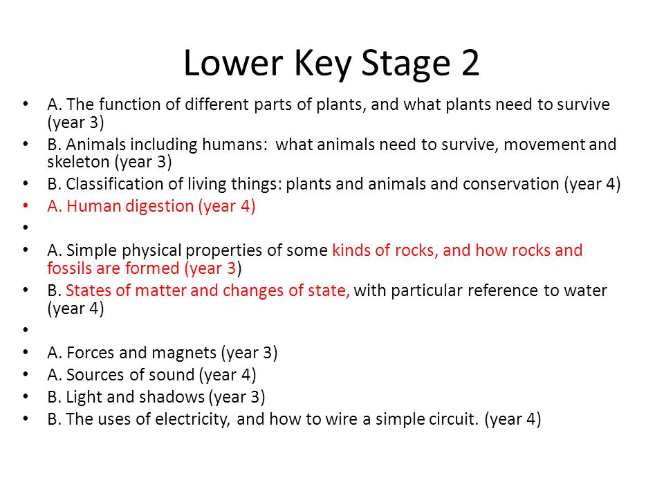 Lower Key Stage 2 A. The function of different parts of plants, and what plants need to survive (year 3) B. Animals including humans: what animals nee