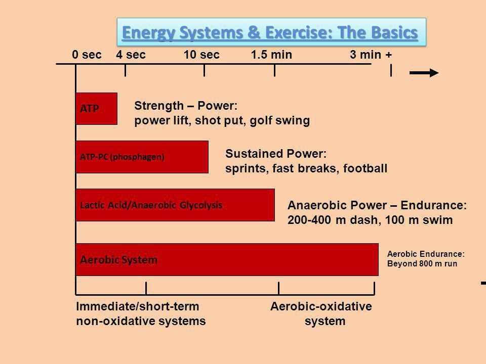 ATP Aerobic System Lactic Acid/Anaerobic Glycolysis ATP-PC (phosphagen) 0 sec 4 sec 10 sec 1.5 min 3 min + Strength – Power: power lift, shot put, gol