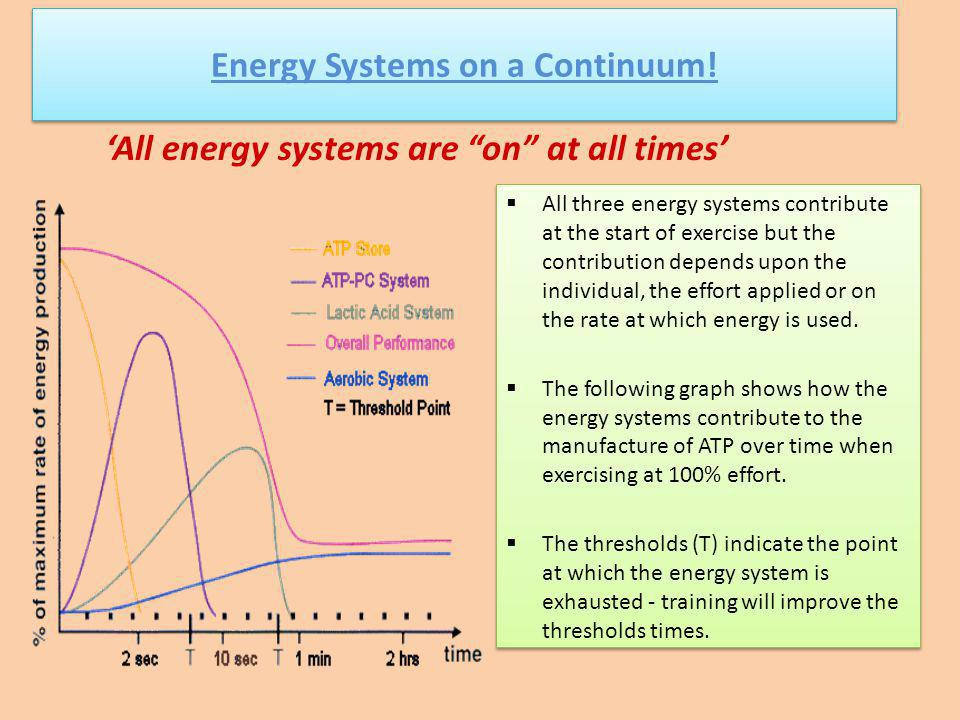 ADENOSINE TRIPHOSPHA TE (ATP) PHOSPHO- CREATINE (PCr) GLYCOLYSIS (ANAEROBIC; CHO BREAKDOWN) KREBS CYCLE (AEROBIC; CHO, FAT, AND PROTEIN BREAKDOWN) Energy Systems on a Continuum.
