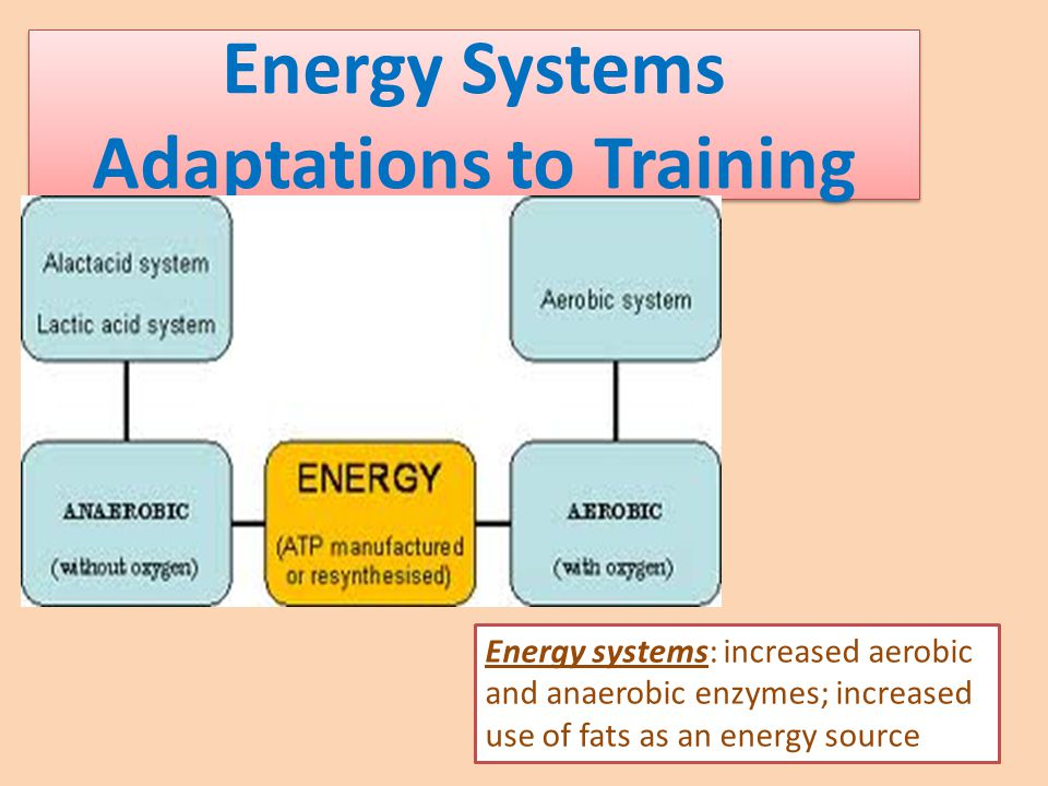 Energy Systems Adaptations to Training Energy systems: increased aerobic and anaerobic enzymes; increased use of fats as an energy source