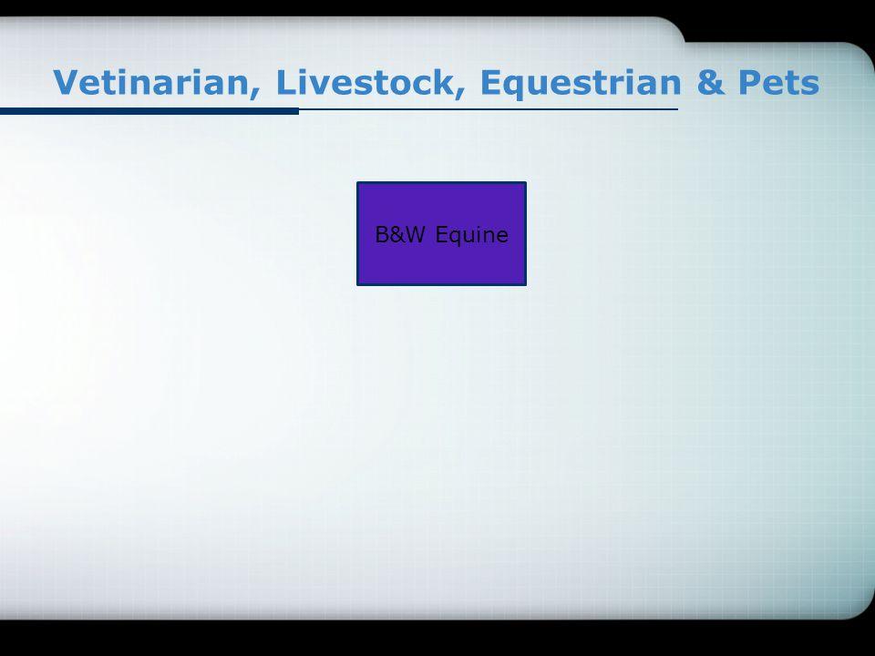Vetinarian, Livestock, Equestrian & Pets B&W Equine