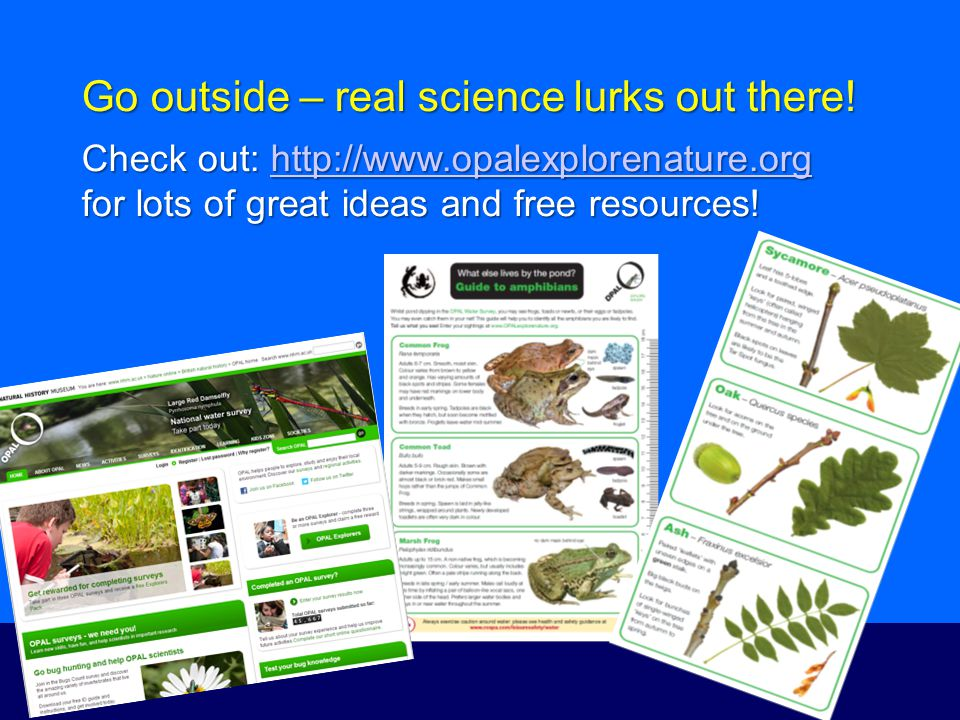 Go outside – real science lurks out there.
