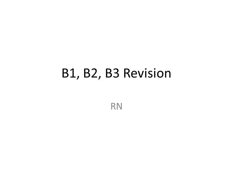 B1, B2, B3 Revision RN