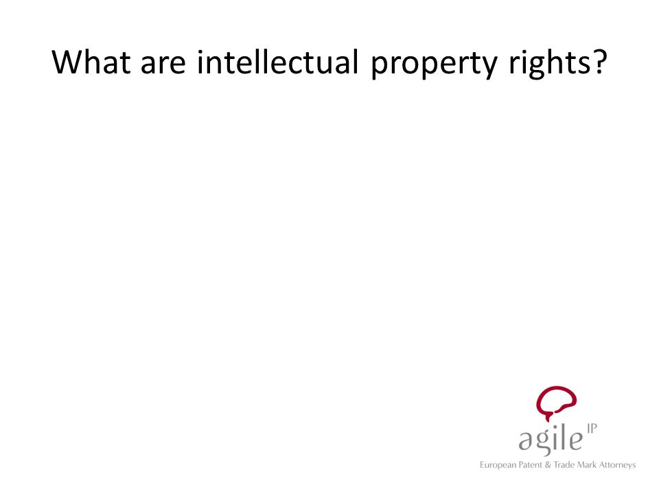 What are intellectual property rights?