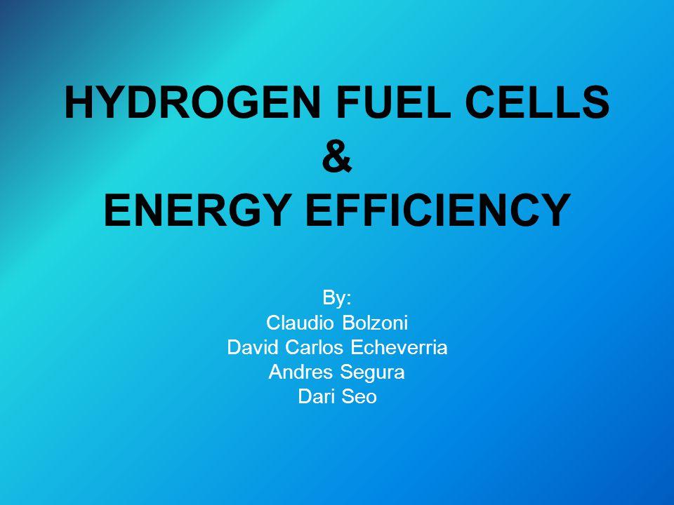HYDROGEN FUEL CELLS & ENERGY EFFICIENCY By: Claudio Bolzoni David Carlos Echeverria Andres Segura Dari Seo