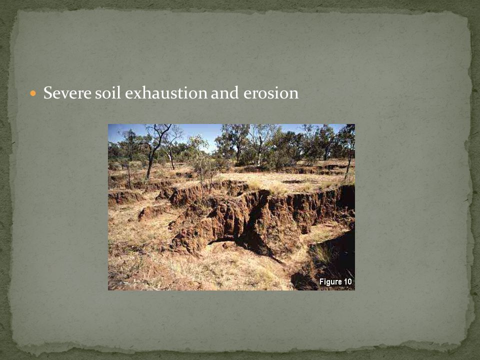 Severe soil exhaustion and erosion