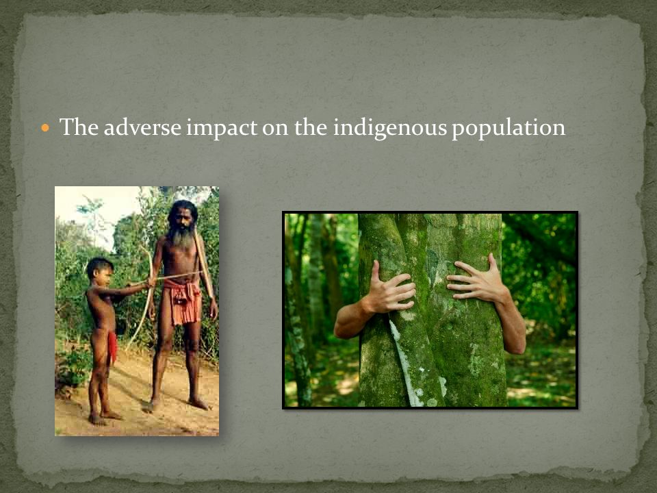 The adverse impact on the indigenous population