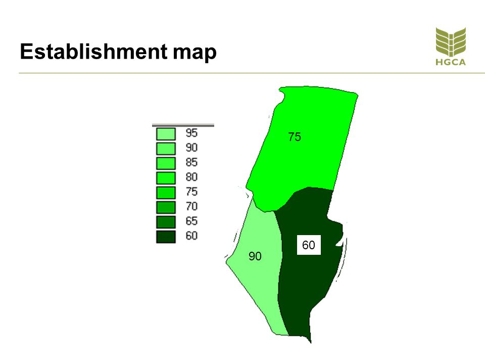 Establishment map 75 90 60