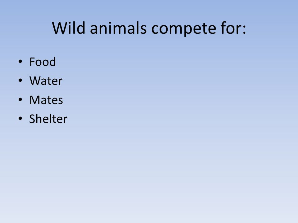 Wild animals compete for: Food Water Mates Shelter