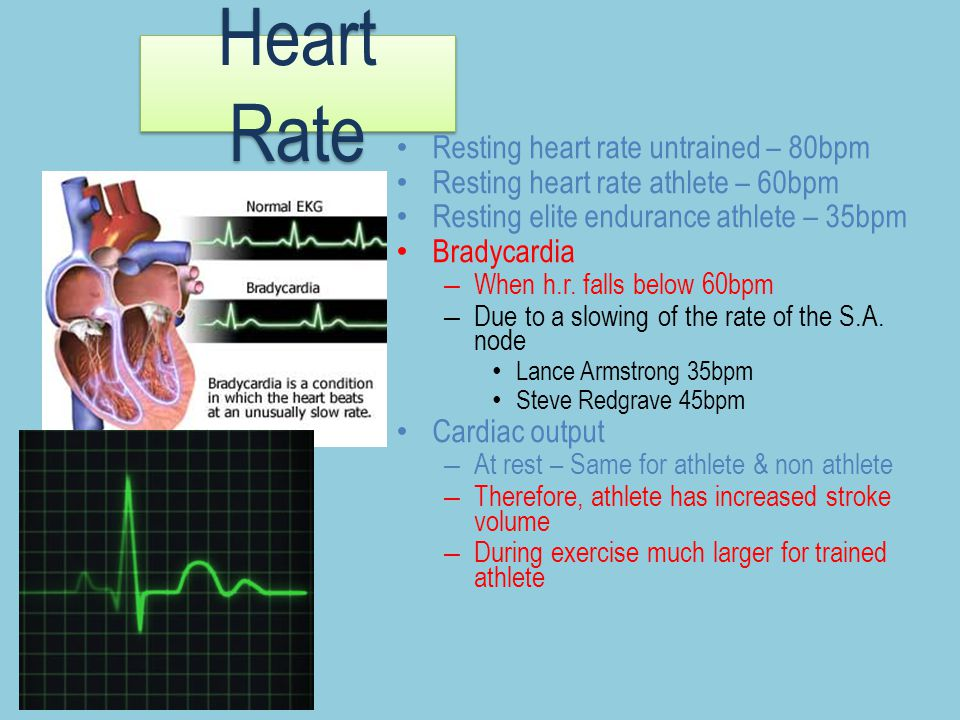 Heart Rate Resting heart rate untrained – 80bpm Resting heart rate athlete – 60bpm Resting elite endurance athlete – 35bpm Bradycardia – When h.r. fal