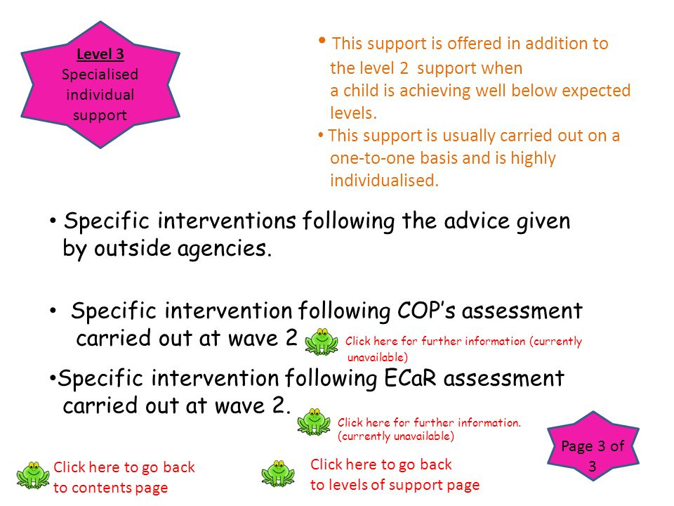Level 3 Specialised individual support Page 3 of 3 This support is offered in addition to the level 2 support when a child is achieving well below exp