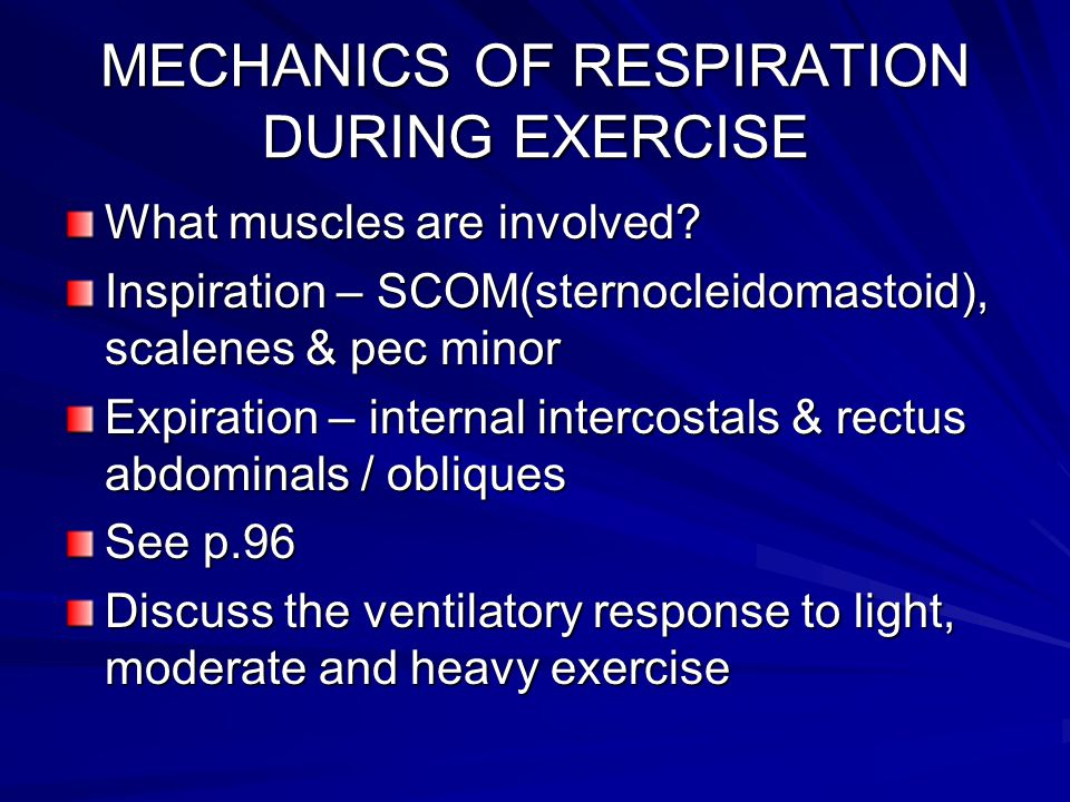 MECHANICS OF RESPIRATION DURING EXERCISE What muscles are involved? Inspiration – SCOM(sternocleidomastoid), scalenes & pec minor Expiration – interna