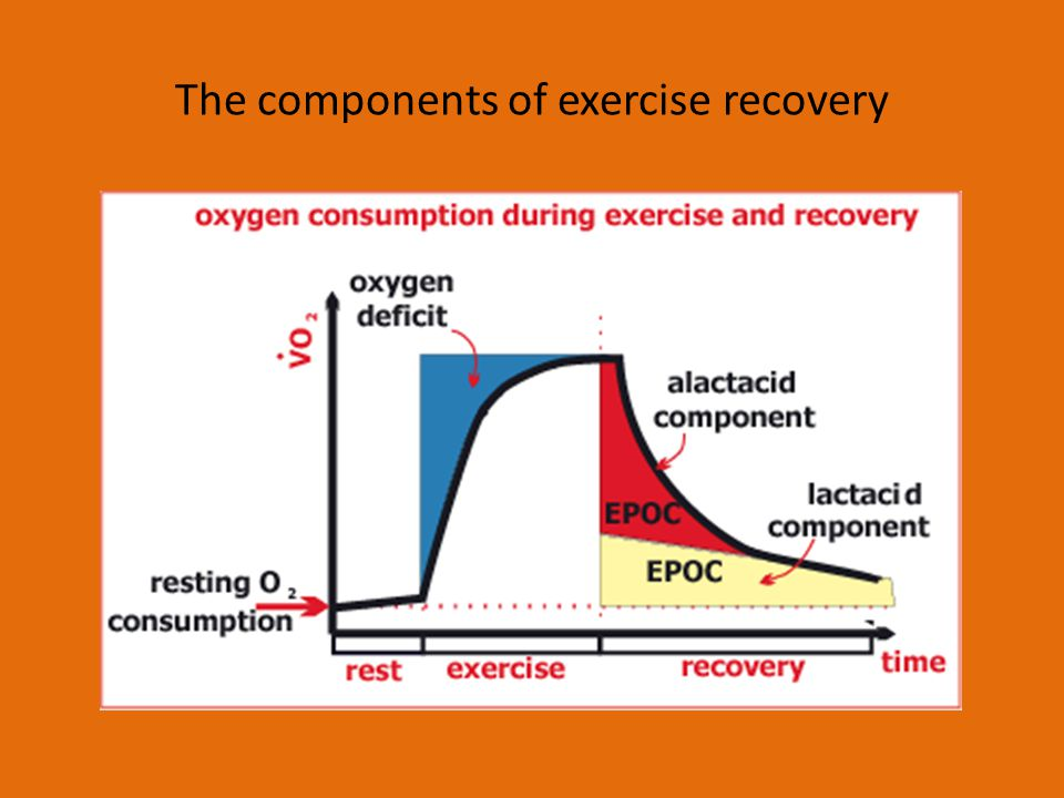 What is oxygen debt.Oxygen debt is used to compensate for oxygen deficit.