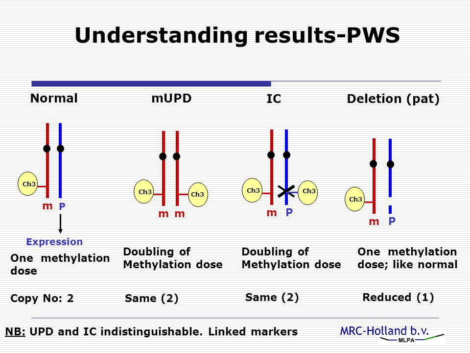 MRC-Holland b.v. Understanding results-PWS Normal P m Ch3 Expression One methylation dose Copy No: 2 mUPD Doubling of Methylation dose m Ch3 m Same (2