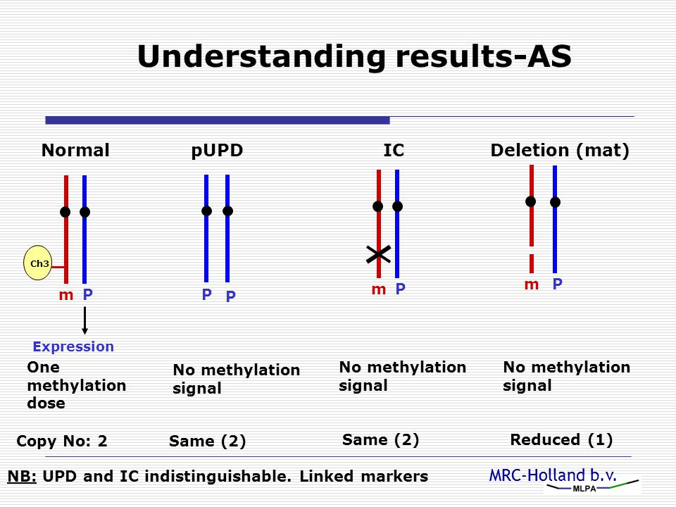 MRC-Holland b.v. Understanding results-AS Normal Pm Ch3 Expression One methylation dose Copy No: 2 pUPD P P No methylation signal Same (2) IC Pm No me