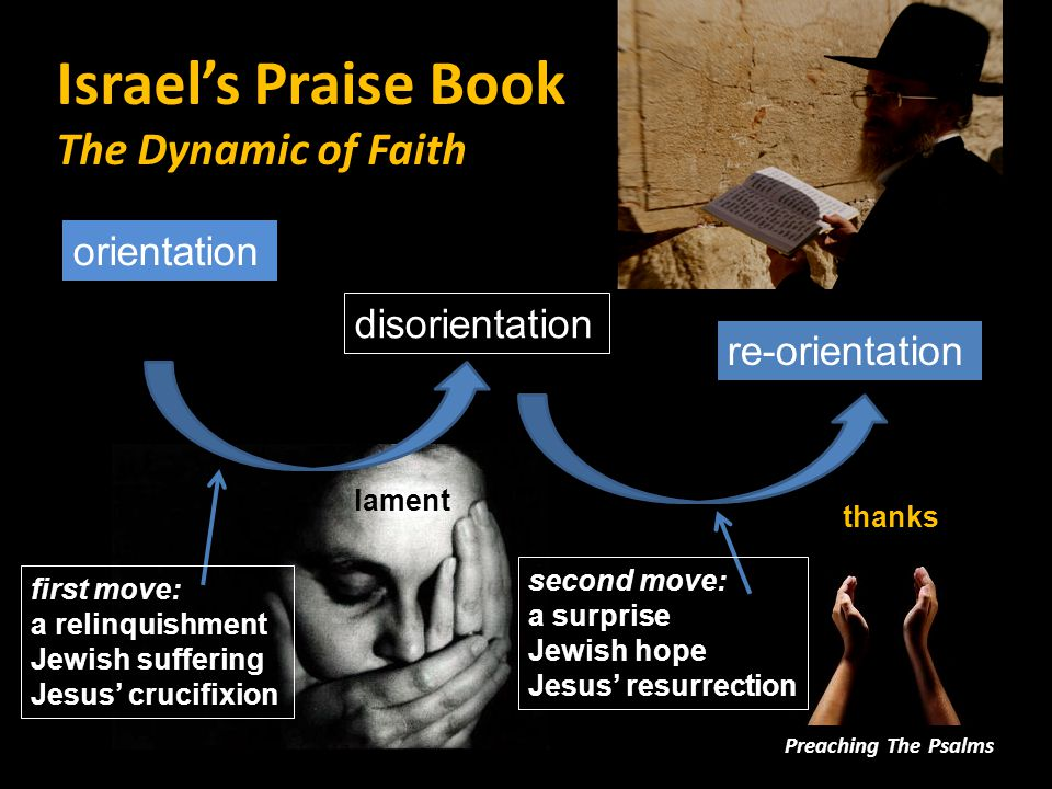 Israel's Praise Book The Book that Speaks For Us Preaching The Psalms Psalms 1.help us to voice our deepest thoughts and feelings.