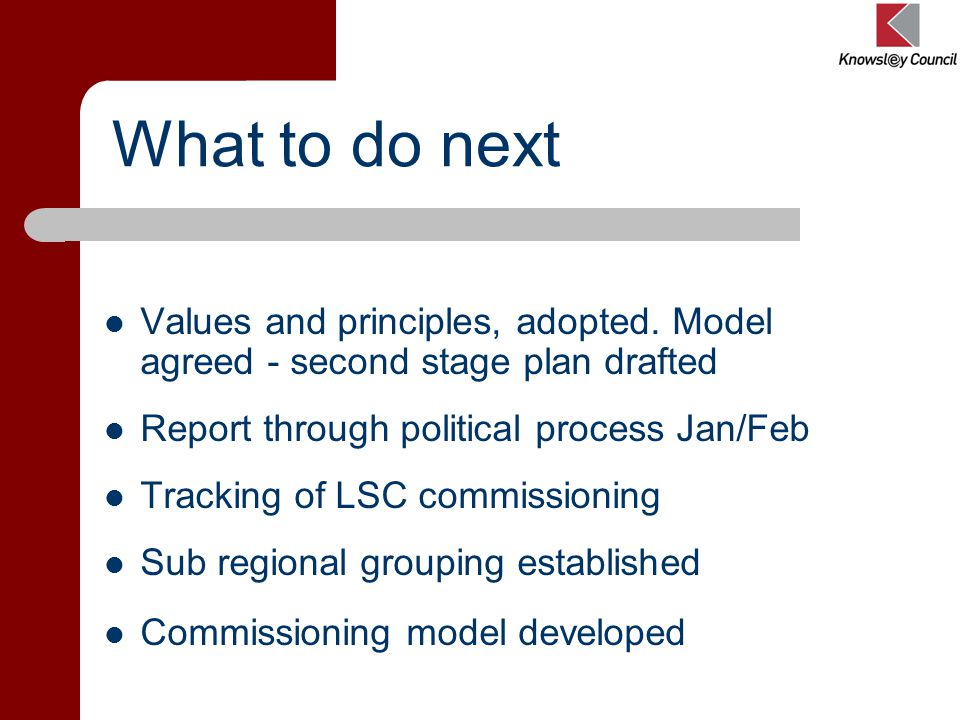 What to do next Values and principles, adopted.