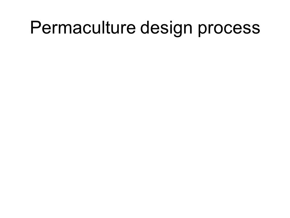 Permaculture design process