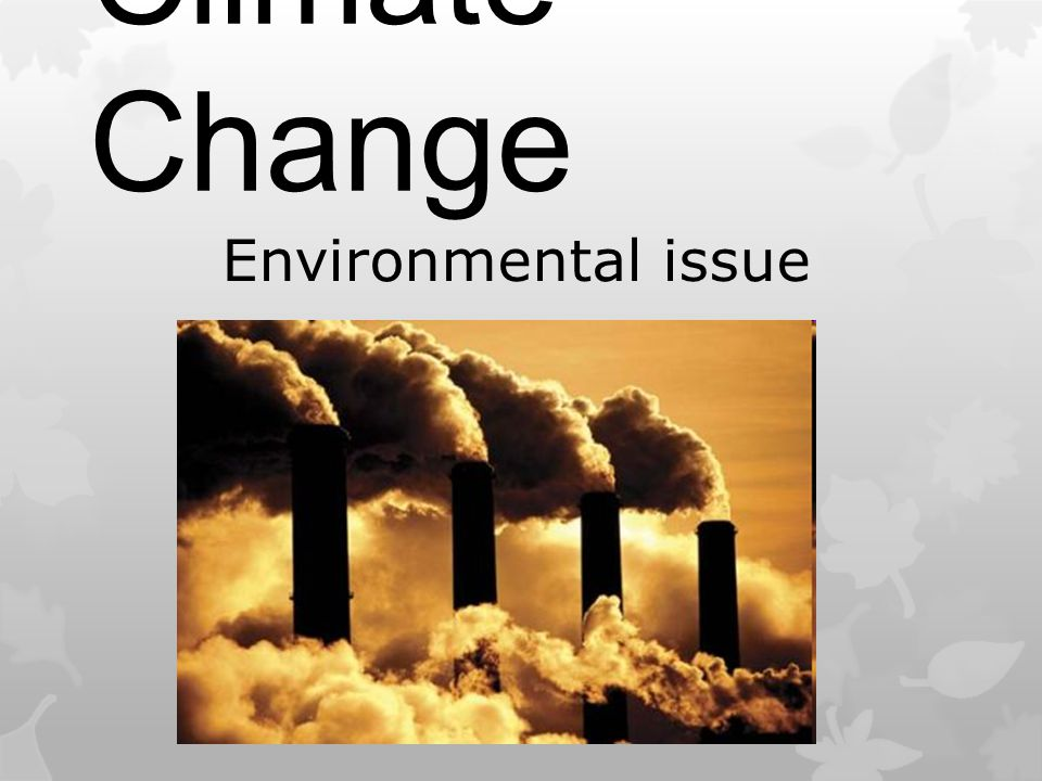 Environmental issue