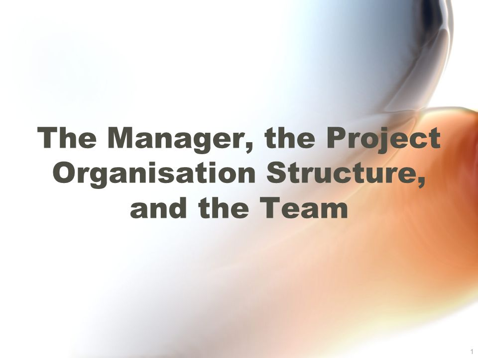 1 The Manager, the Project Organisation Structure, and the Team