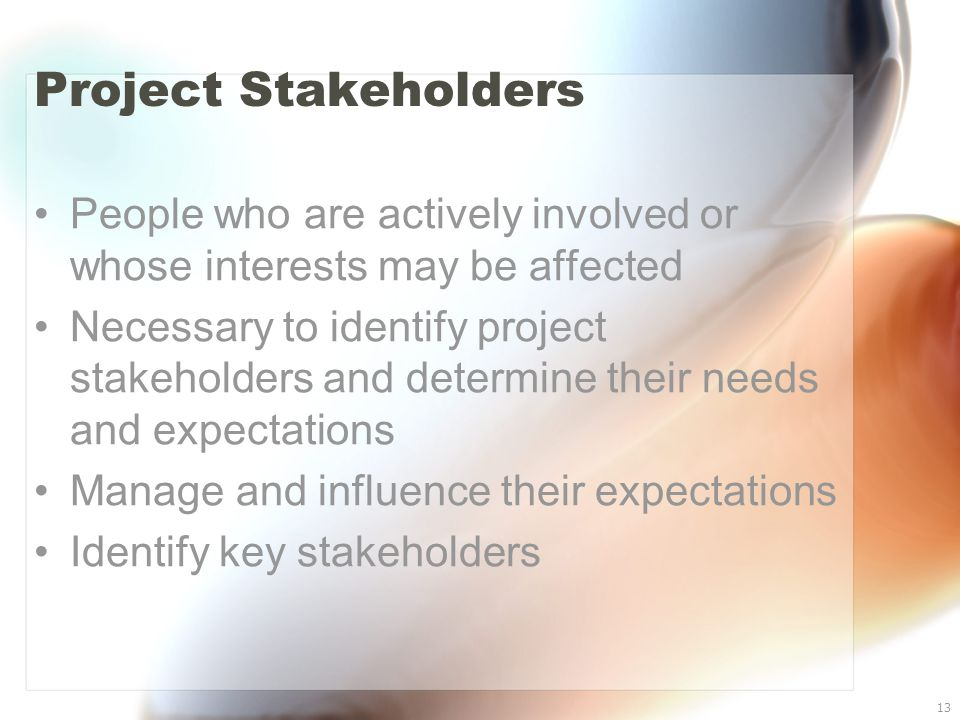 13 Project Stakeholders People who are actively involved or whose interests may be affected Necessary to identify project stakeholders and determine t