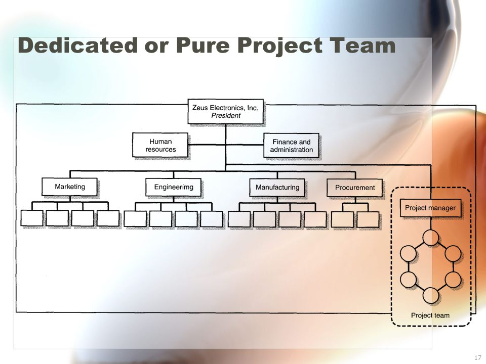 17 Dedicated or Pure Project Team