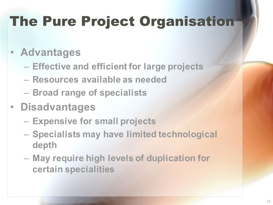 18 The Pure Project Organisation Advantages –Effective and efficient for large projects –Resources available as needed –Broad range of specialists Dis