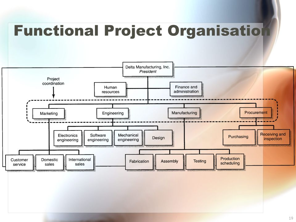 19 Functional Project Organisation