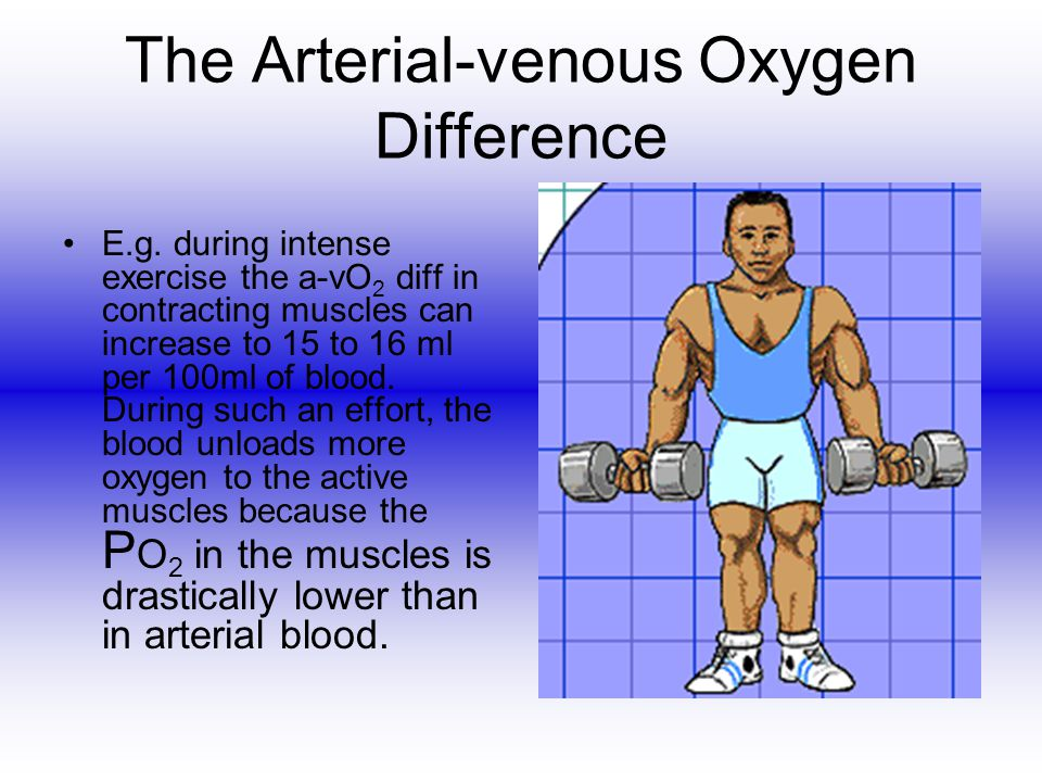 The Arterial-venous Oxygen Difference E.g. during intense exercise the a-vO 2 diff in contracting muscles can increase to 15 to 16 ml per 100ml of blo