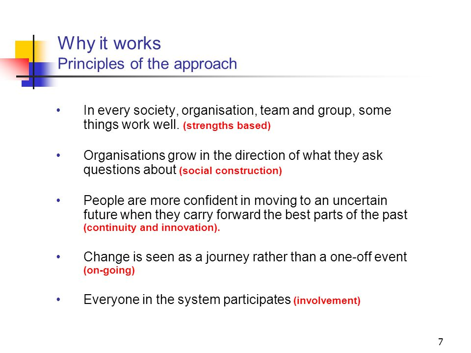 7 Why it works Principles of the approach In every society, organisation, team and group, some things work well.
