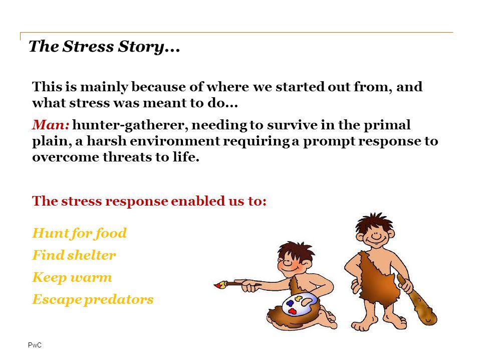 PwC The Stress Story...