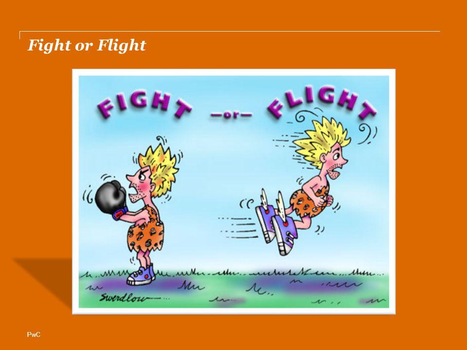 PwC Fight or Flight