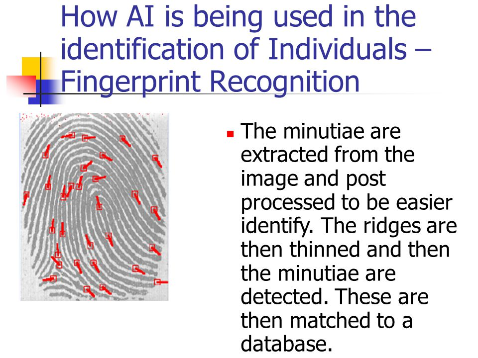 How AI is being used in the identification of Individuals – Fingerprint Recognition The minutiae are extracted from the image and post processed to be easier identify.
